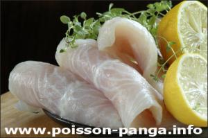pour-contre-poisson-panga